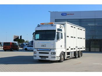 Livestock truck MAN TGA 26.540 6X2-2 LL RETARDER, FOR ANIMALS