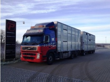 Volvo FM12 420 Animal transport with henger - Euro 3 - livestock truck
